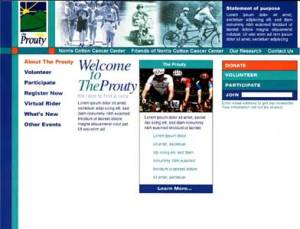 Fundraiser Website