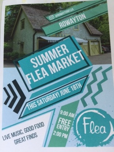 Flea flyer