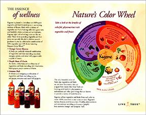 Trifold brochure inside